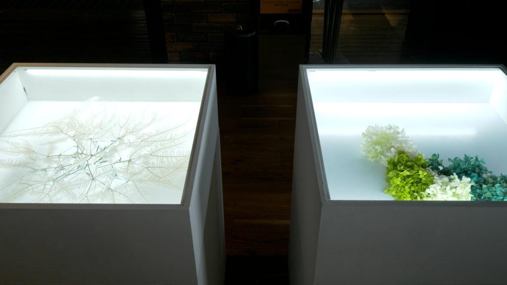 「ENCOUNTERS | メディア芸術クリエイター育成事業」展示 場所:東急プラザ銀座